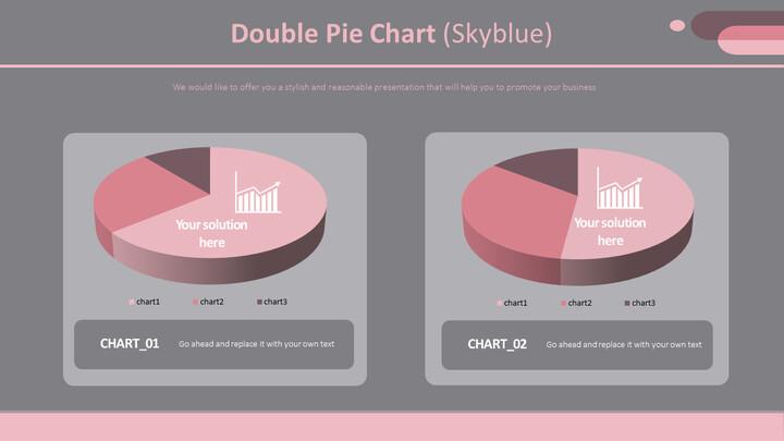 Double Pie Chart (Skyblue)_02