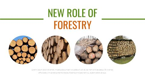 Forestry Google Slides Templates for Your Next Presentation_02
