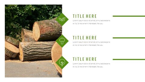 Forestry Google Slides Templates for Your Next Presentation_05