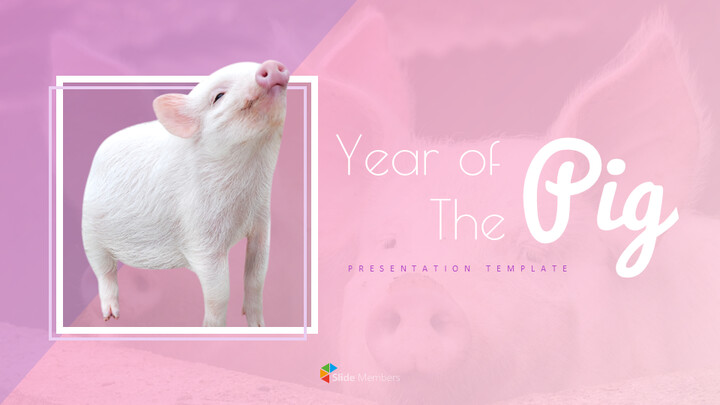 Year of The Pig Google Slides Themes_01