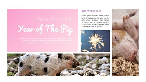 Year of The Pig Google Slides Themes_03