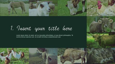 Farm and Livestock Keynote mac_04