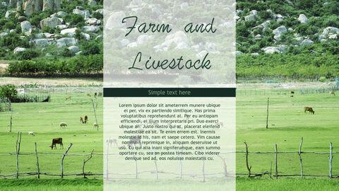 Farm and Livestock Keynote mac_11