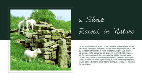 Farm and Livestock Keynote mac_25