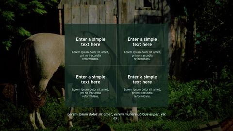 Farm and Livestock Keynote mac_28