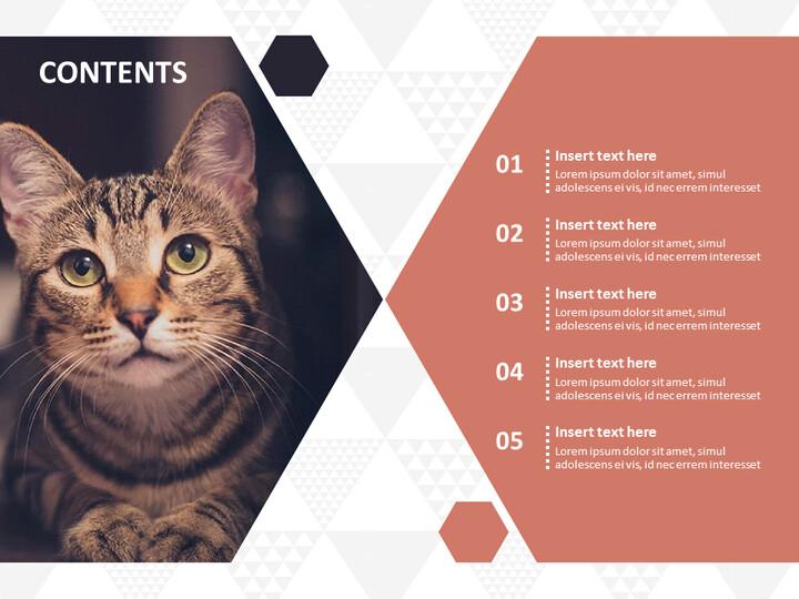 Free Google Slides themes - Pet Cat_02