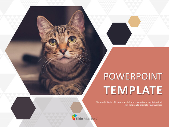 Free Google Slides themes - Pet Cat_01