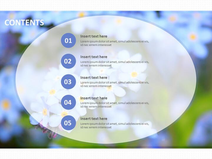 무료 Google 슬라이드 배경 - 실제 이미지로 하늘색 꽃_02