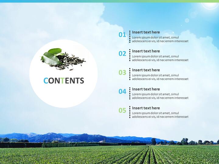 Free Google Slides Backgrounds - Wide Green Tea Farm_02