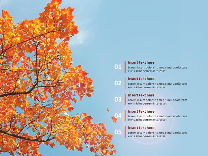 가을의 단풍 - Google 슬라이드 템플릿 무료 다운로드_02