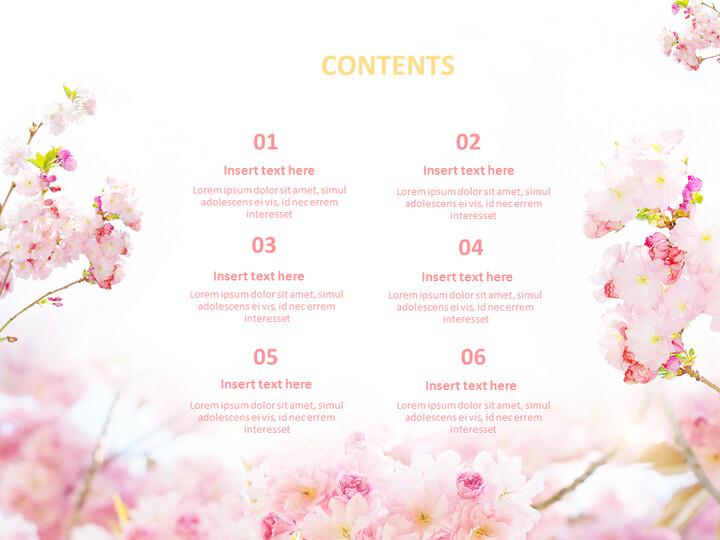 Free Google Slides - Pink Cherry Blossoms_02