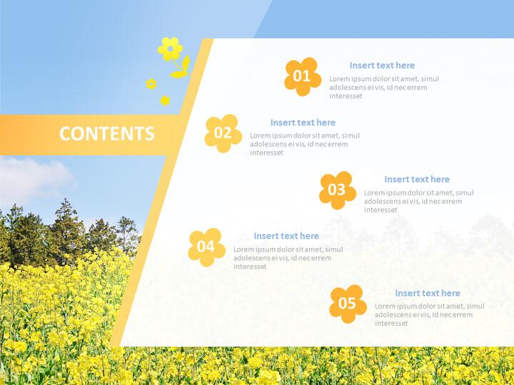 Rape Blossoms - Free Business Google Slides Templates_02