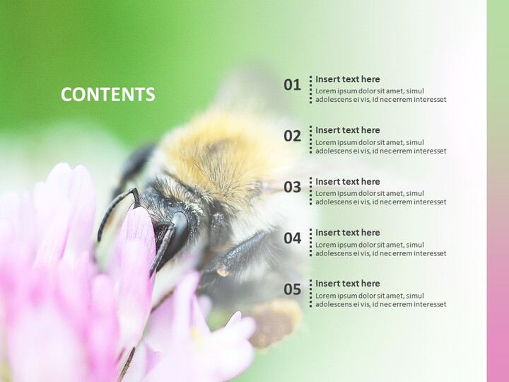 Flowers and Bees - Google Slides Images Free Download_02