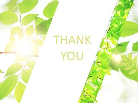 6 월 신선한 잎 - 무료 Google 슬라이드 템플릿_06
