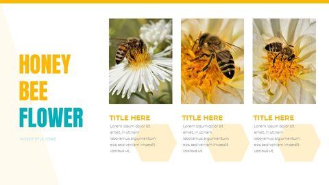 Honeybee Creative Google Slides_04