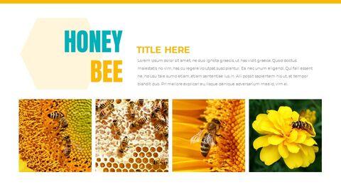 Honeybee Creative Google Slides_05
