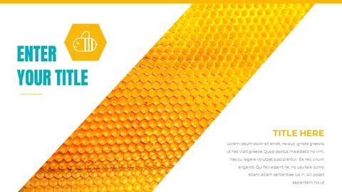 Honeybee Creative Google Slides_06