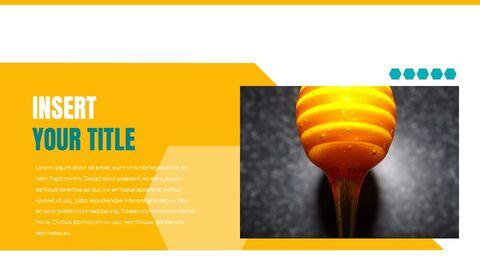 Honeybee Creative Google Slides_26