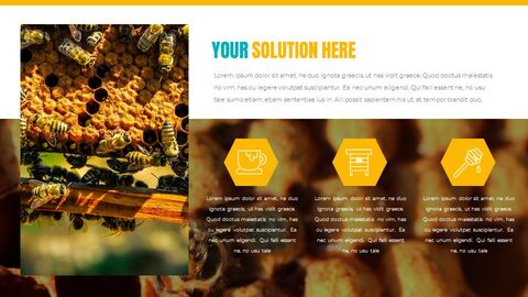 Honeybee Creative Google Slides_31