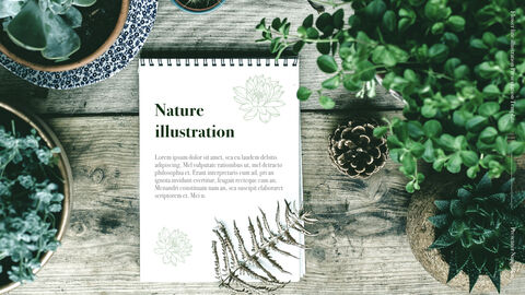 Flower line illustration Simple Keynote Template_03