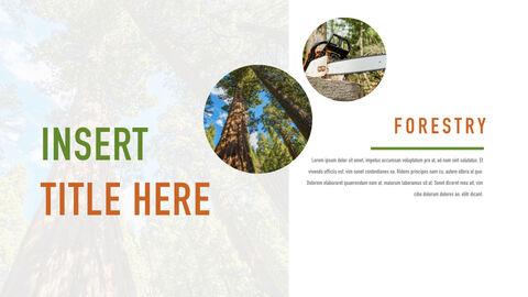 Forestry Apple Keynote Template_03