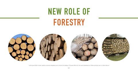 Forestry Apple Keynote Template_07