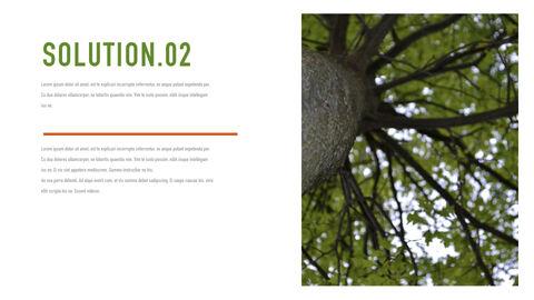 Forestry Apple Keynote Template_18