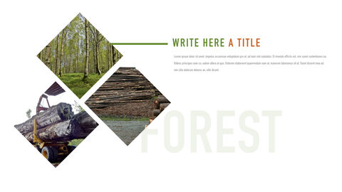 Forestry Apple Keynote Template_05