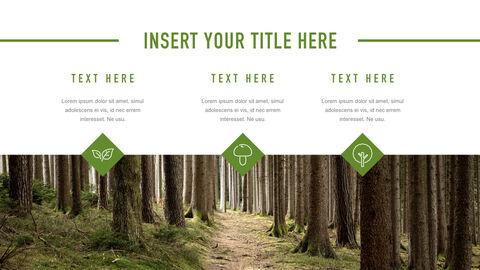 Forestry Apple Keynote Template_34