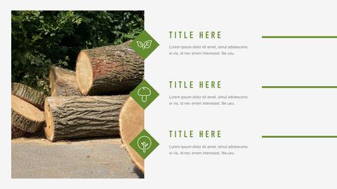 Forestry Apple Keynote Template_36