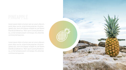 summer pineapple & watermelon Simple Keynote Template_27