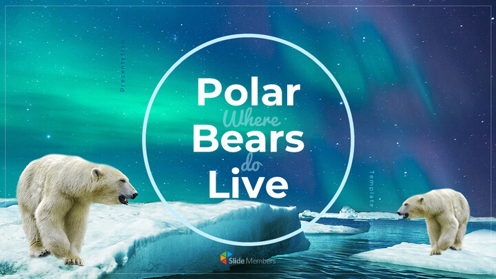 Where do polarbears live Google Presentation Templates_01