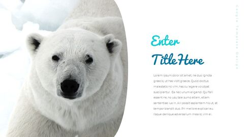 Where do polarbears live Google Presentation Templates_03