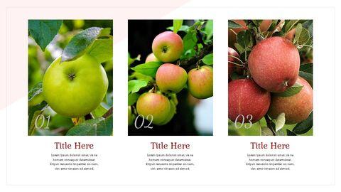 사과 과수원 Google 슬라이드 프레젠테이션 템플릿_03