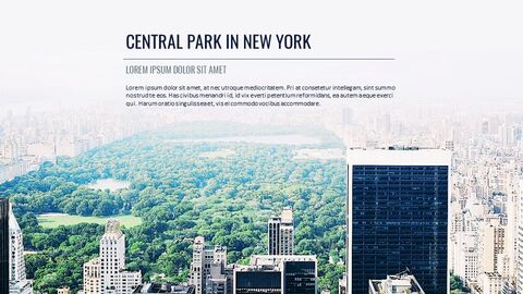 Travel in New York Google Slides Themes & Templates_04