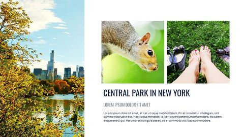 Travel in New York Google Slides Themes & Templates_05