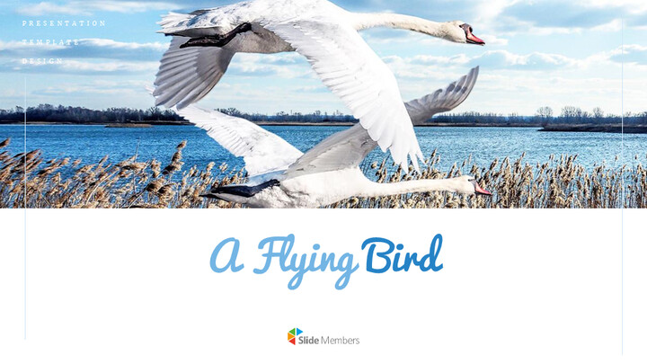 A Flying Bird Simple Google Slides Templates_01