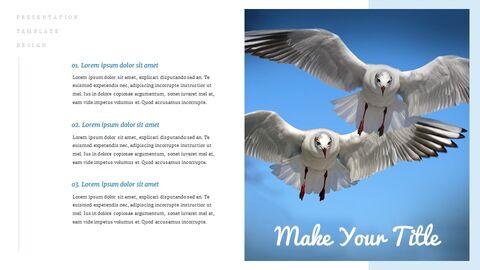 조류 (새) 심플한 Google 슬라이드 템플릿_05