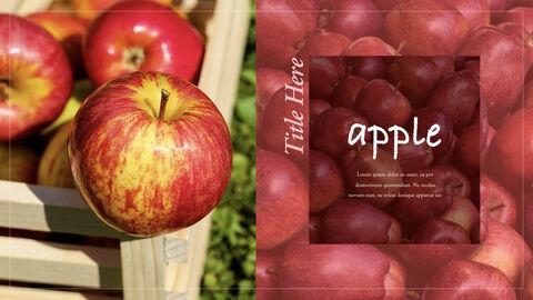 사과 과수원 크리에이티브 키노트_11