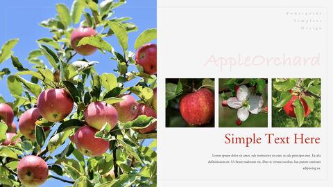 사과 과수원 크리에이티브 키노트_13