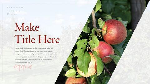사과 과수원 크리에이티브 키노트_21