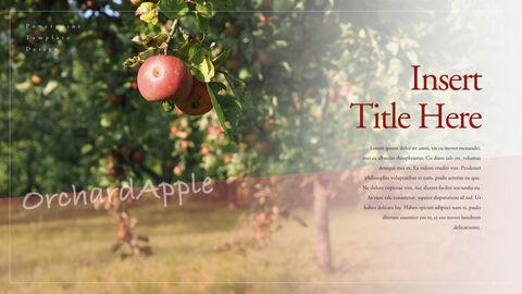 사과 과수원 크리에이티브 키노트_22