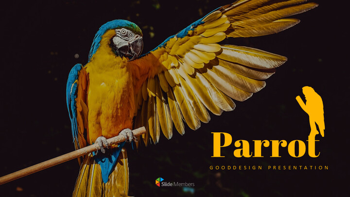 Parrot Best Google Slides_01