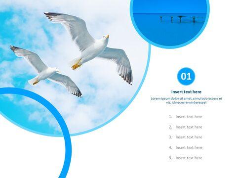 무료 PPT 템플릿 디자인 - 갈매기_03