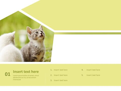 Kittens - Free Business PowerPoint Templates_03