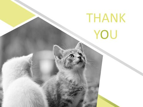 Kittens - Free Business PowerPoint Templates_06