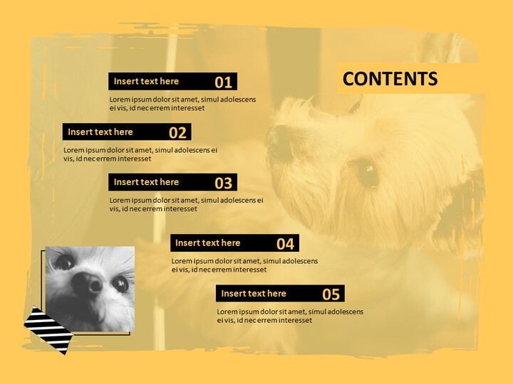 Yorkshire Terrier - PPT Design Free_02