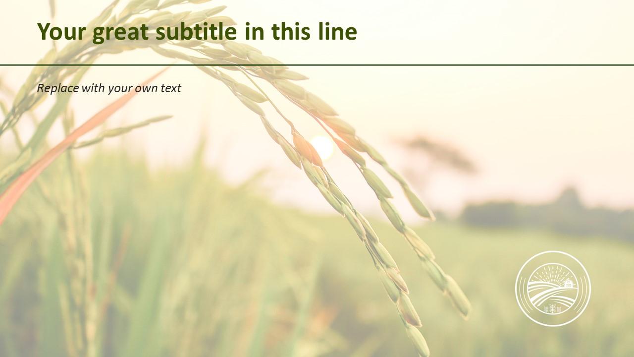 Free Presentation Template Autumn Rice Plant