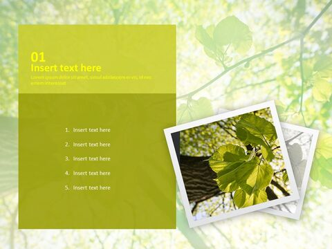 Green Leaves - Free PPT Presentations_03