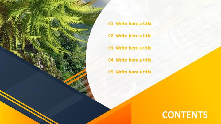 Rainforest - Free PowerPoint_02